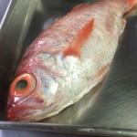 さてこのお魚、何でしょう。調理してみた。